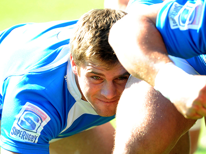 Large cj stander bulls scrum 630