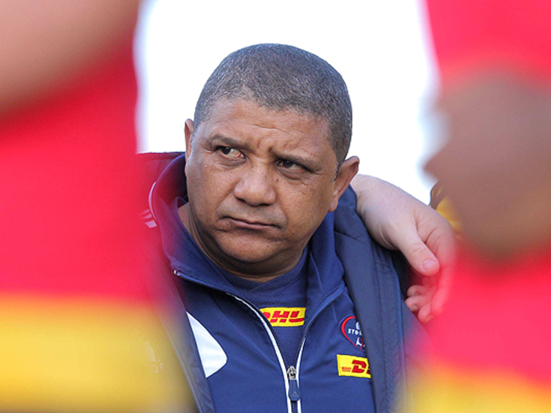 Large allister coetzee team 630