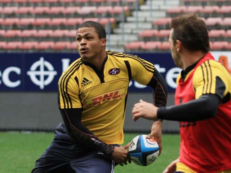 Large de jongh passes training630