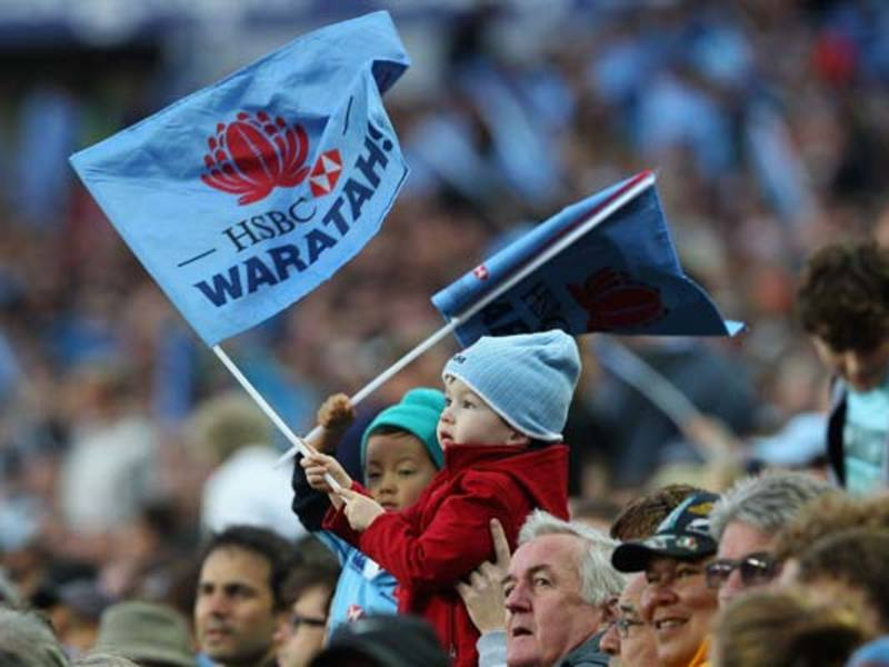 Large waratahs flag630