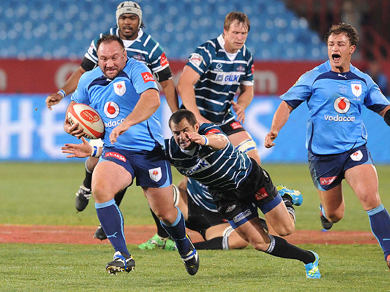 Large willie wepener blue bulls 6