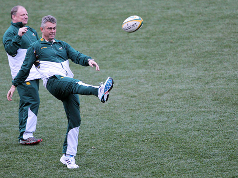 Large heyneke meyer kicks 630