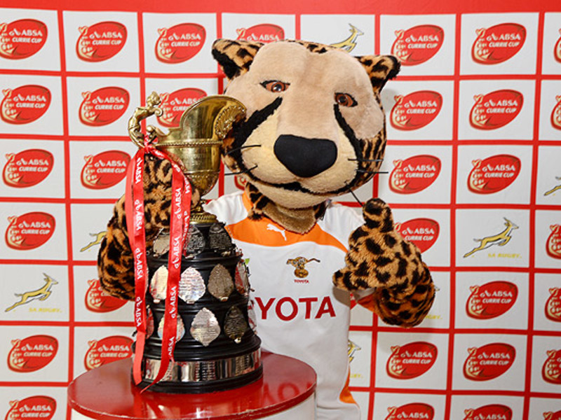 Large cheetahs mascot with currie