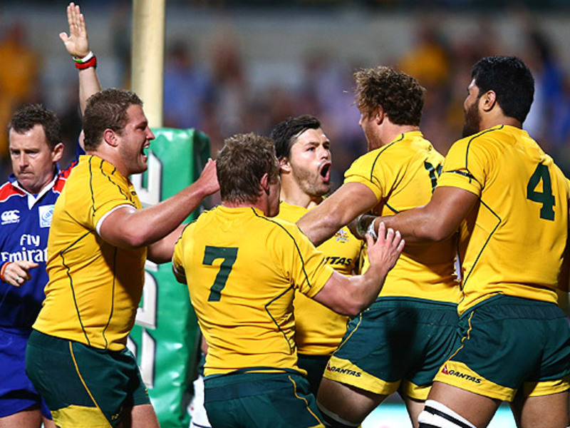 Large wallabies celebrate v boks