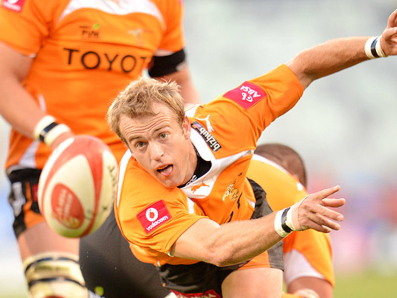 Large sarel pretorius pass v lion