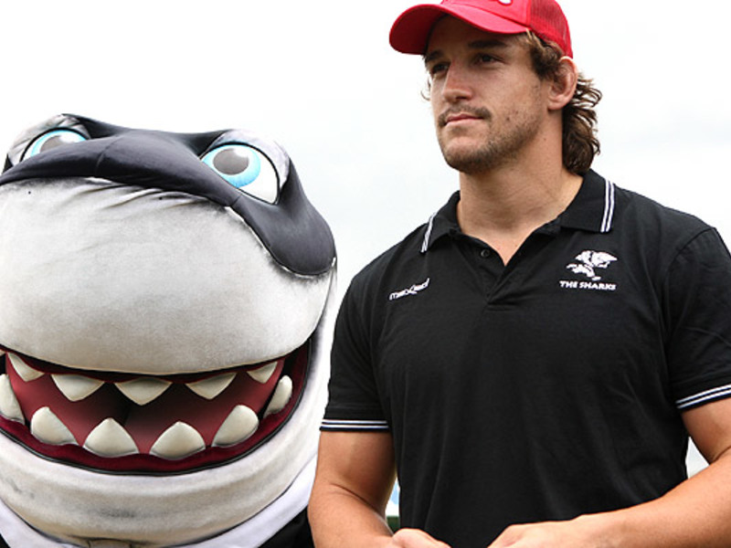 Large sharkie with keegan daniel