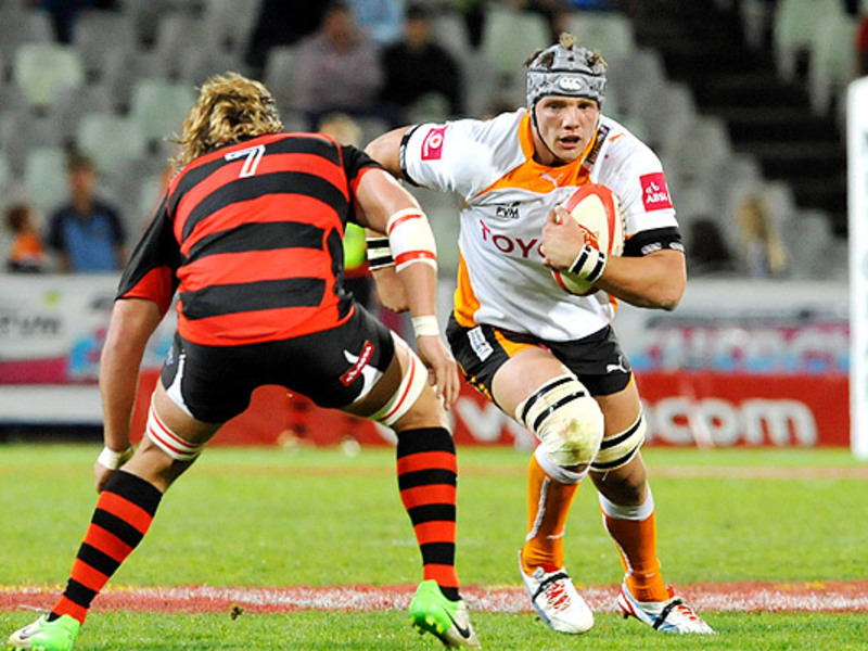 Large kings v cheetahs 630