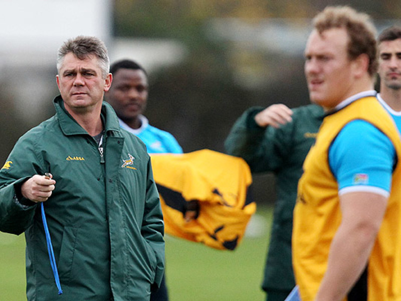 Large heyneke meyer boks training
