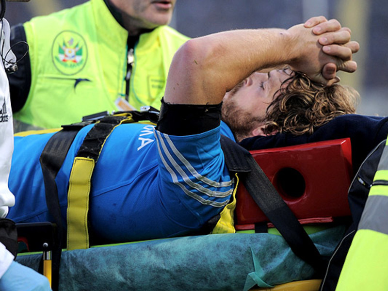 Large mirco bergamasco injured
