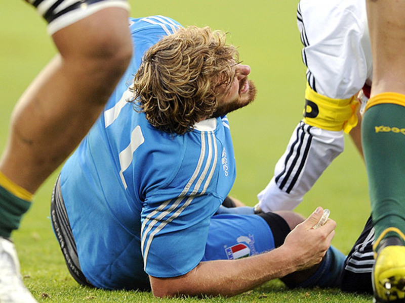Large mirco bergamasco injured2 6