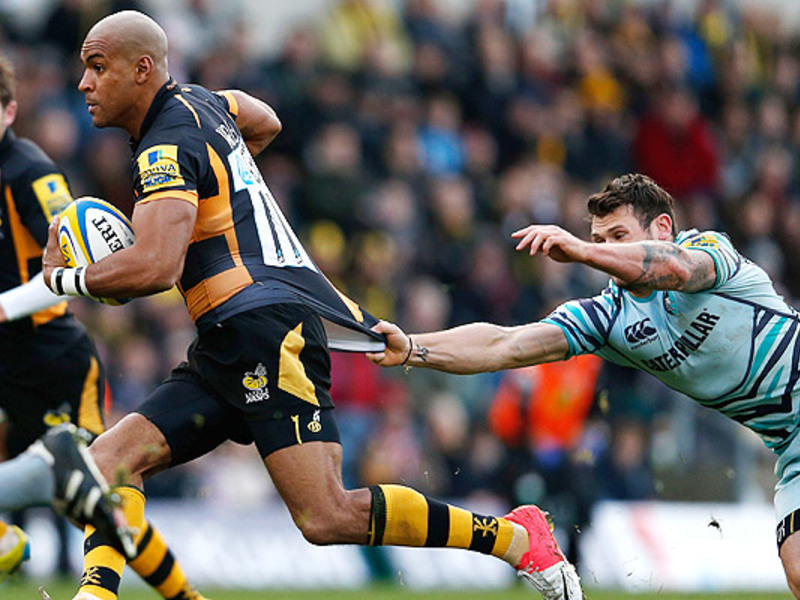 Large tom varndell wasps