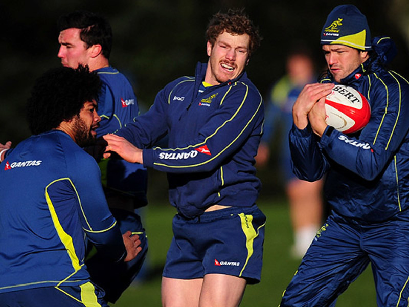 Large wallabies training 630