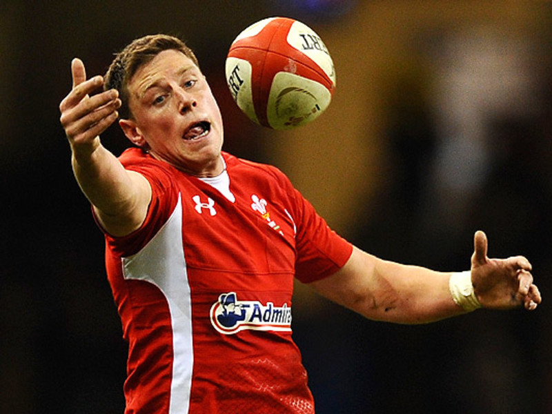 Large rhys priestland stretch bal