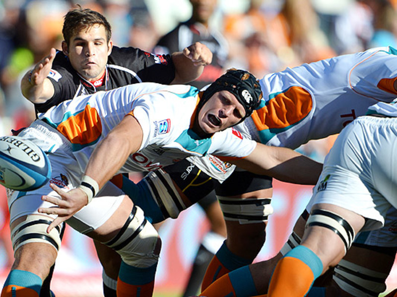 Large philip van der walt v shark