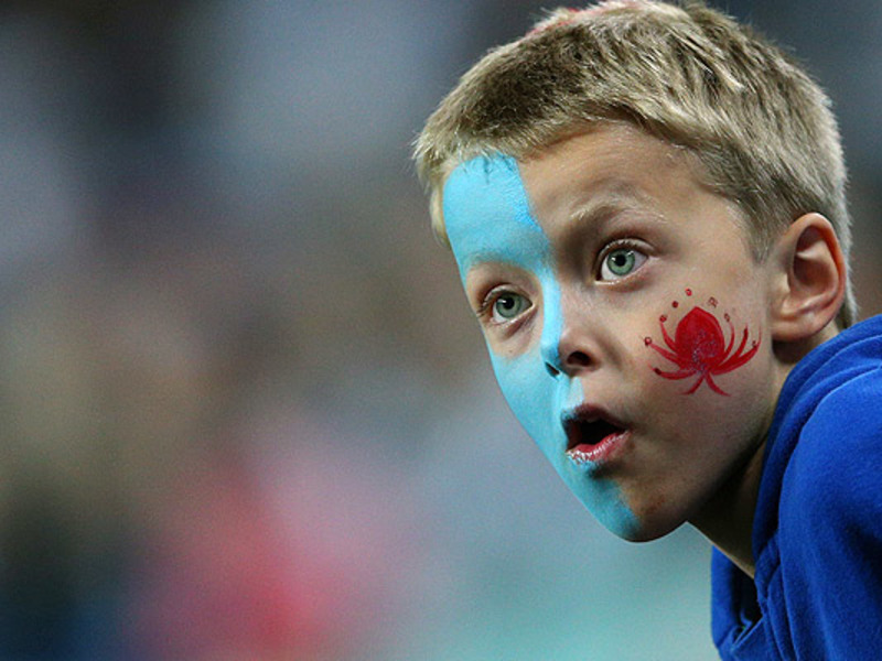 Large waratahs fan