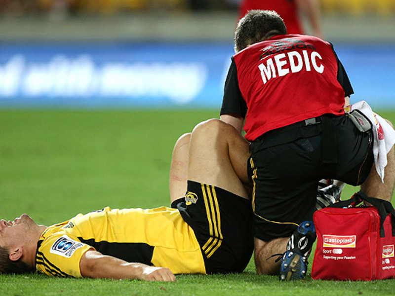 Large dane coles injured
