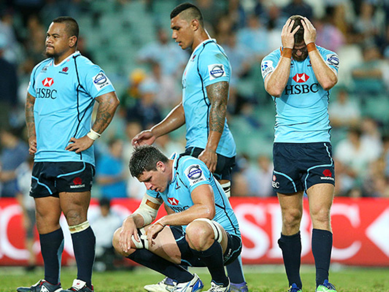 Large waratahs dejected2