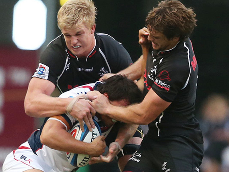 Large sharks v rebels