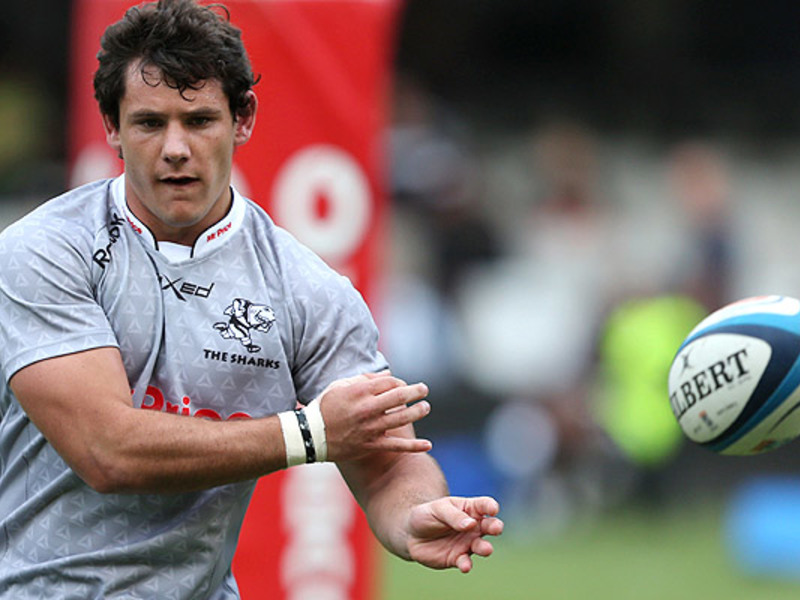 Large marcell coetzee sharks trai