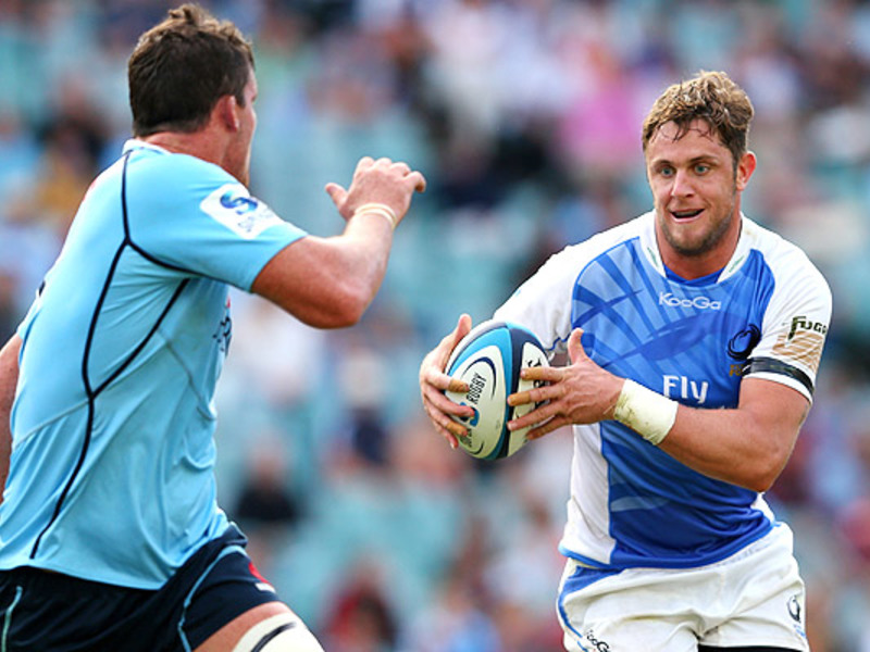 Large waratahs v force