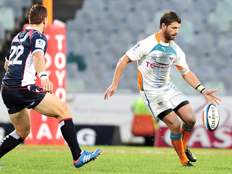 Large willie le roux cheetahs v r