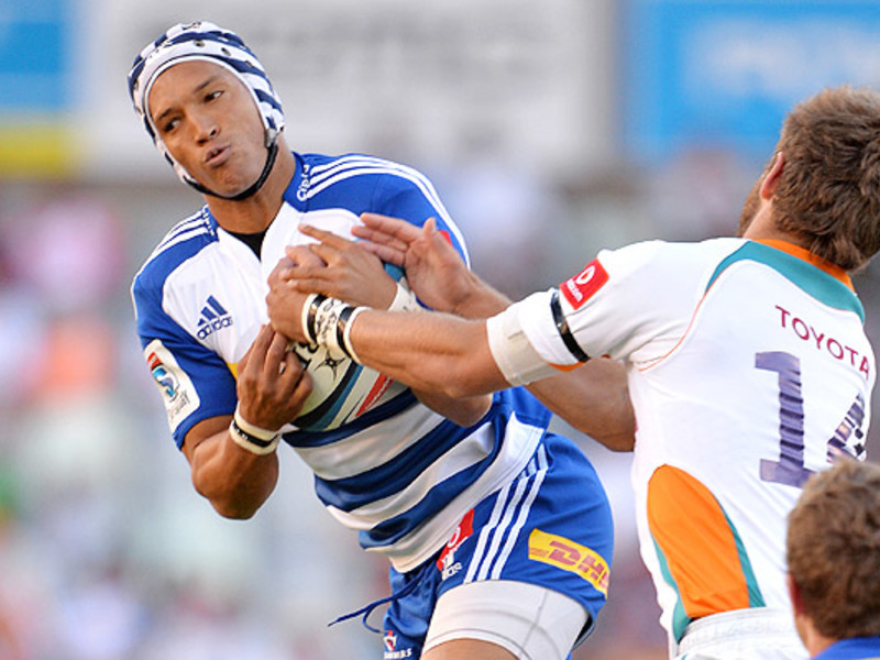Large cheetahs v stormers