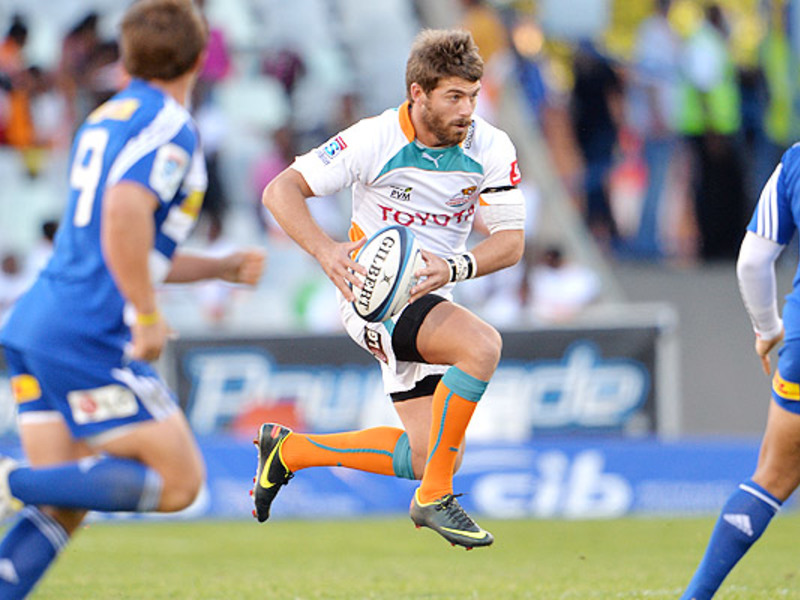Large cheetahs v stormers4
