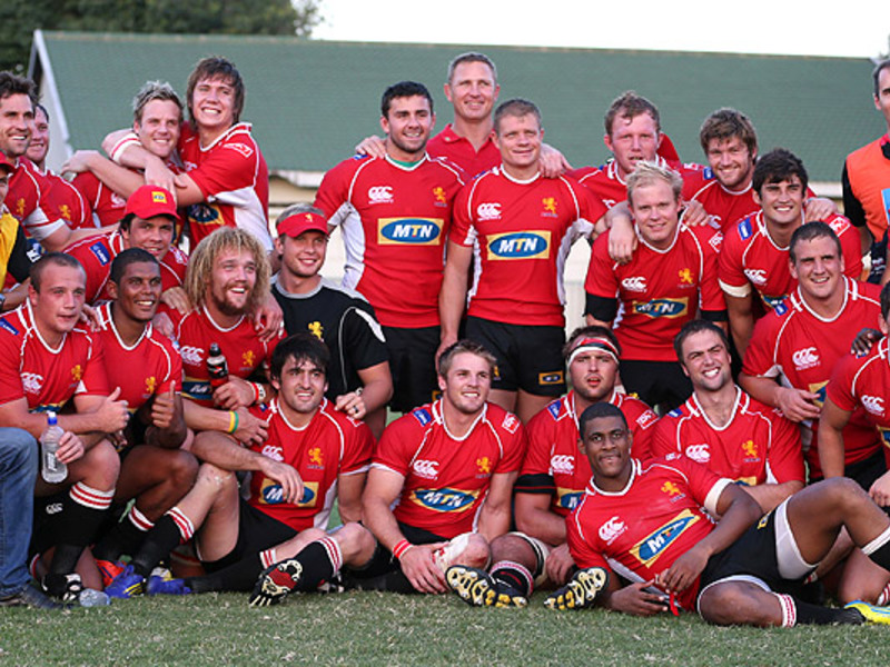 Large golden lions team pic