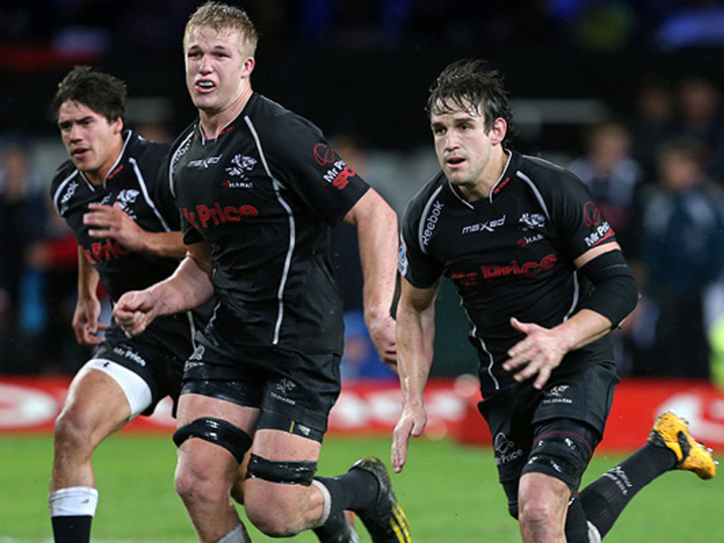 Large pieter steph du toit sharks