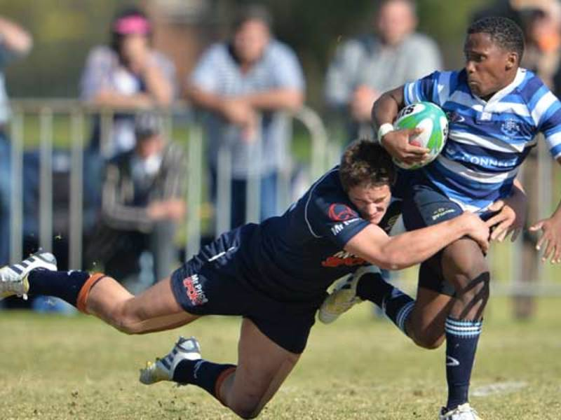 Large grey v paarl boys630