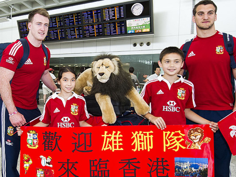 Large lions arrive in hong kong