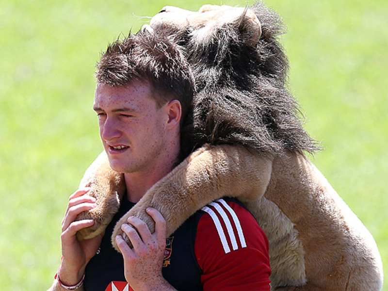 Large stuart hogg with lions masc