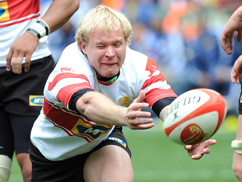 Large ross cronje lions