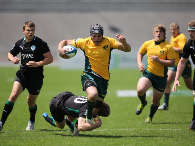 Large wallabies irelandu20