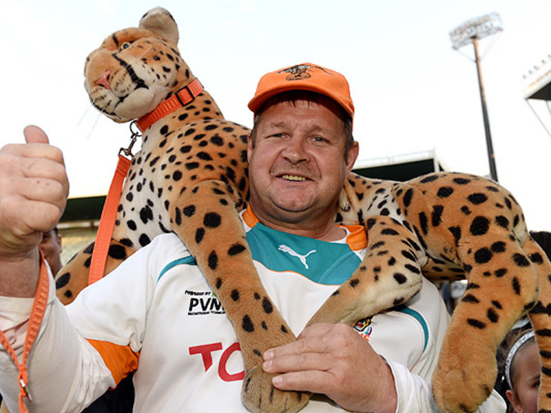 Large cheetahs fan