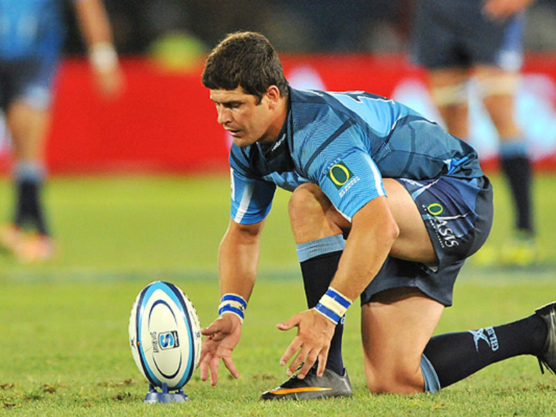 Large morne steyn bulls kicks