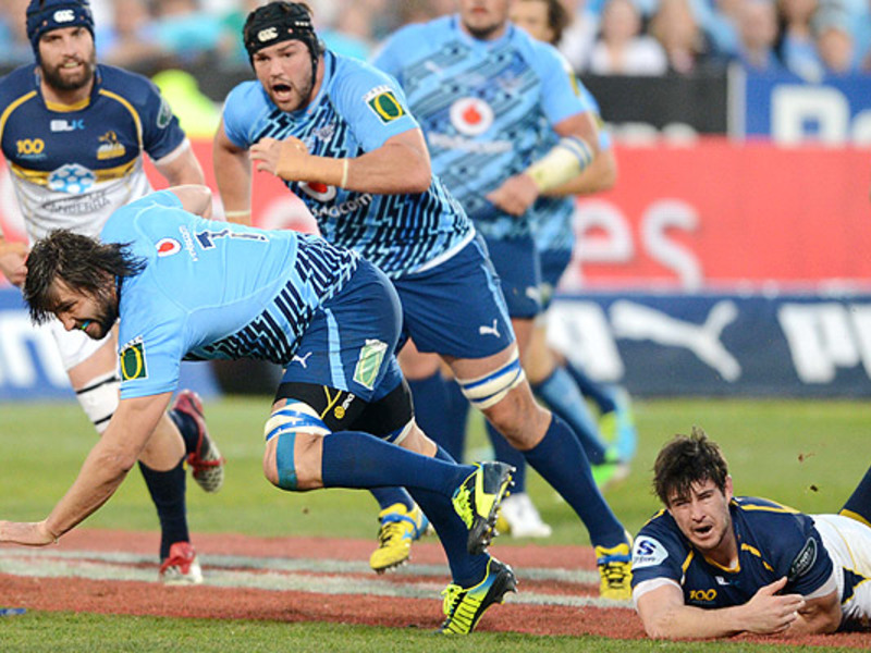 Large bulls v brumbies2