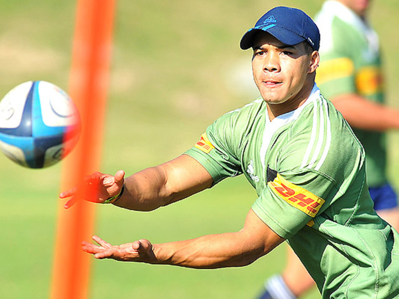 Large cheslin kolbe wp2