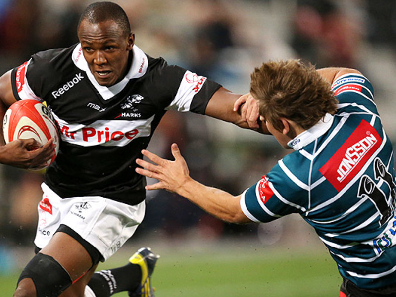 Large sharks v griquas2