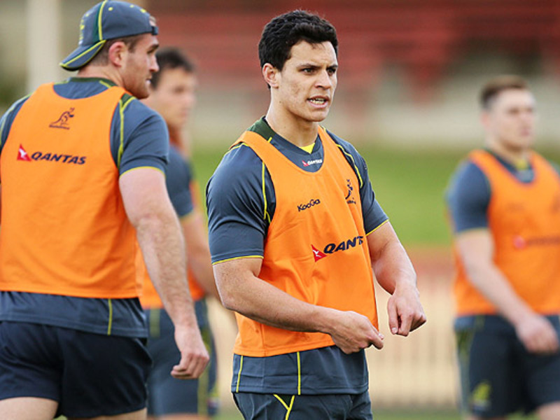 Large matt toomua wallabies looks