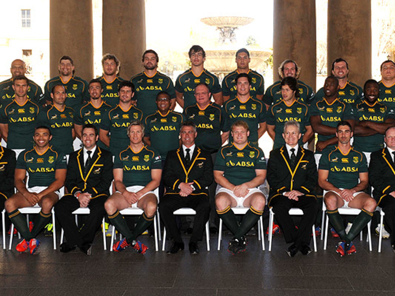 Large springbok team