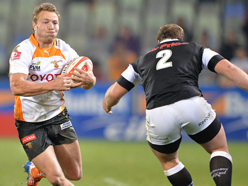 Large cheetahs v sharks3