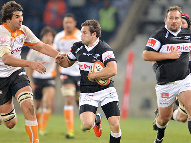 Large cheetahs v sharks4