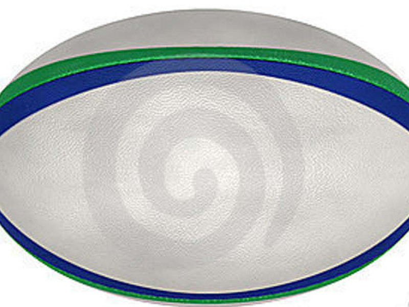 Large rugby ball general2