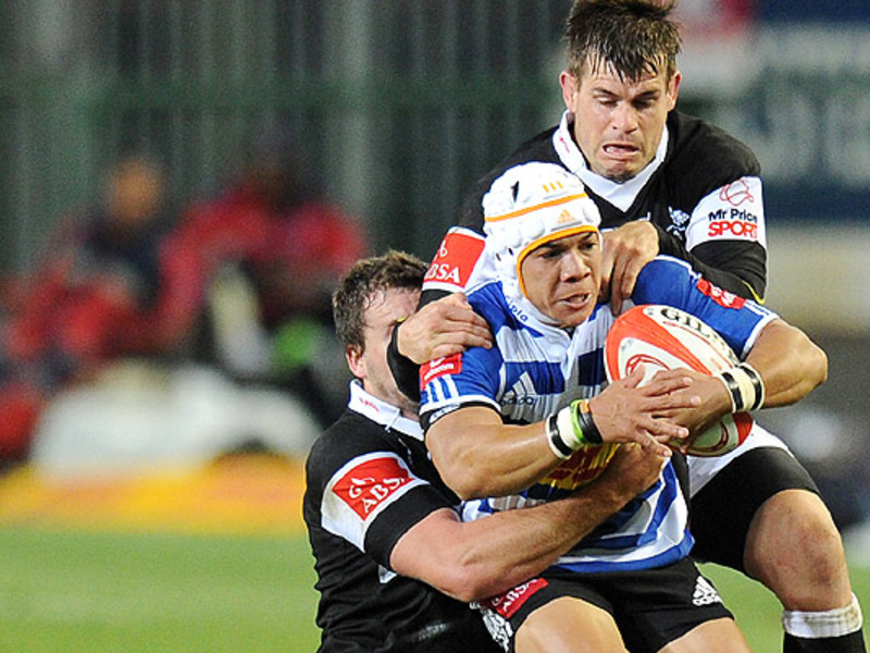 Large wp v sharks
