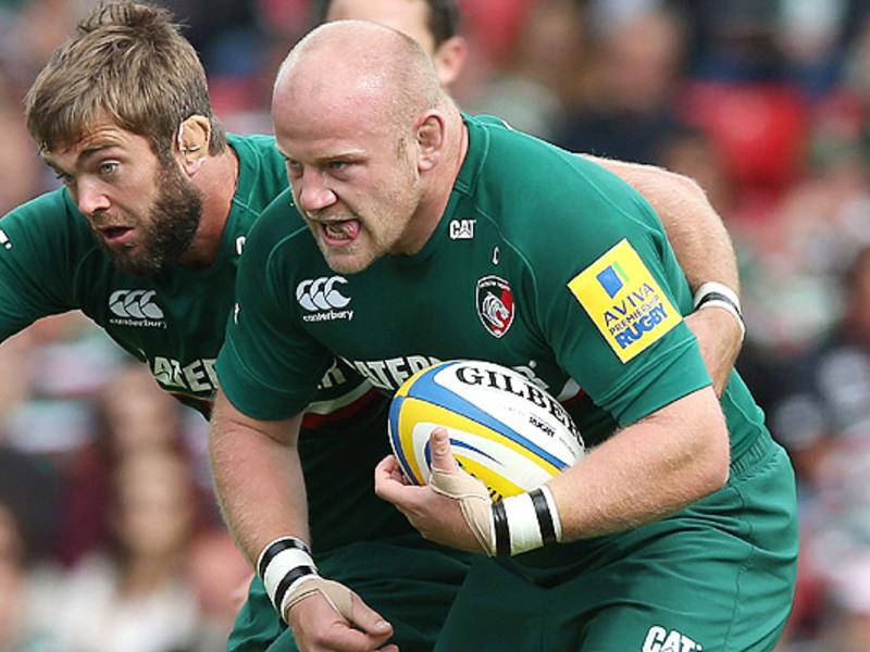 Large dan cole tigers