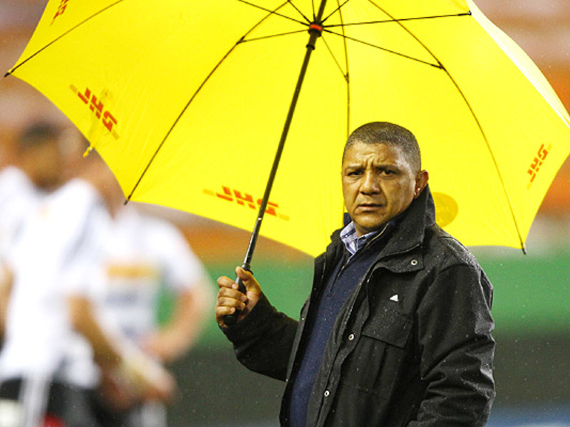 Large allister coetzee umbrella
