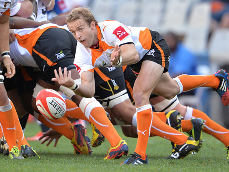 Large sarel pretorius cheetahs pa