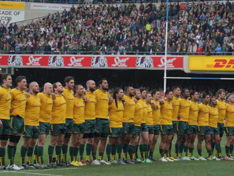 Large wallabies anthem630