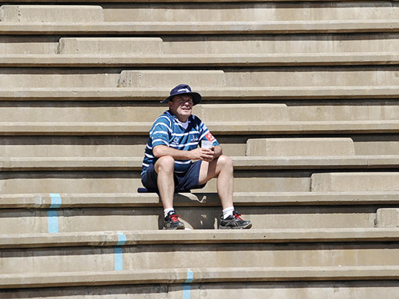 Large griquas fan alone